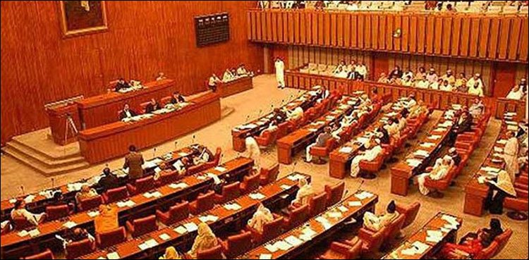 Senate passes resolution against India's illegal annexation of occupied Kashmir